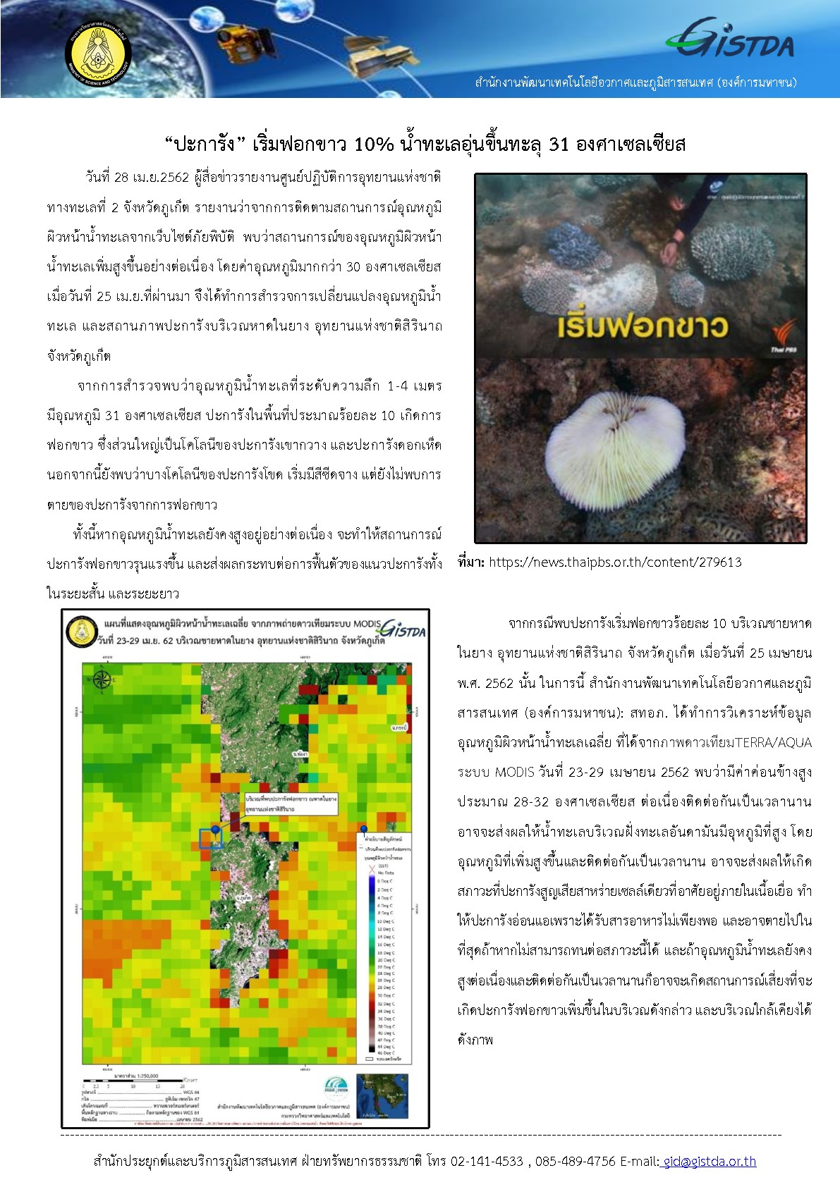 02_20190429__Coral Bleaching_Phuket-001-001