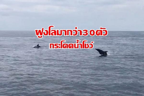 620926_Greennews_01_zpsnqijhn6m