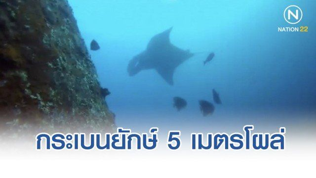 621111_NationTV_01_zpsb8vqpook